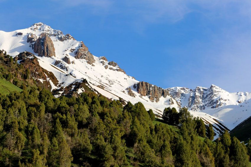Заповедники и национальные парки Кыргызстана