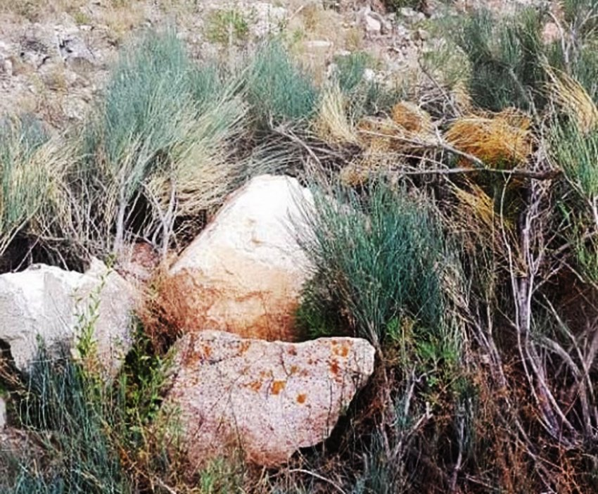ФОТО. ВИДЕО. Факты экоцида на золоторудном месторождении Шыралжын в Таласской области
