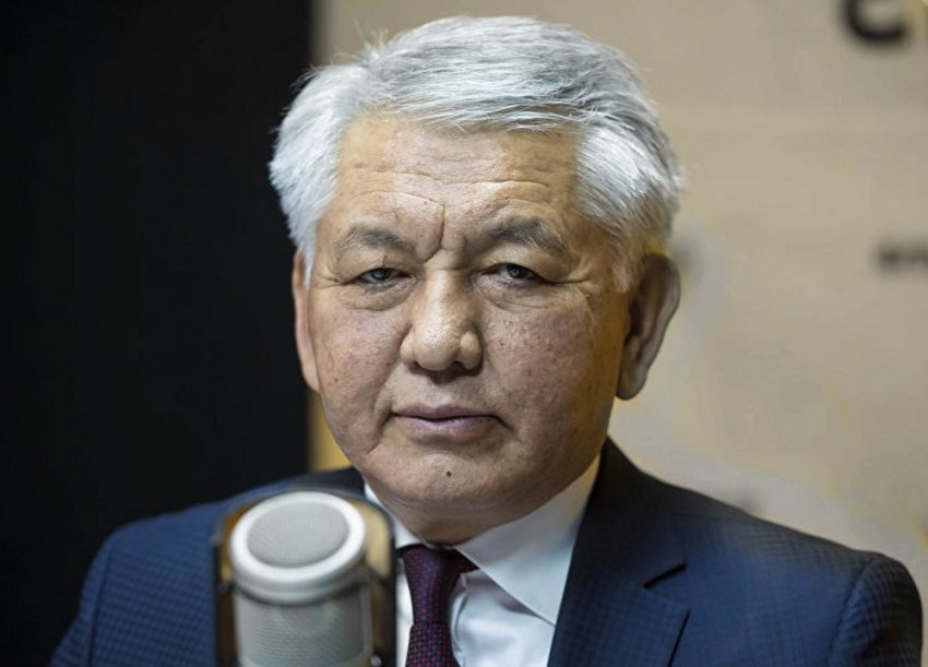 Депутаты Жогорку Кенеша обрекли снежного барса в Кыргызстане на медленное вымирание