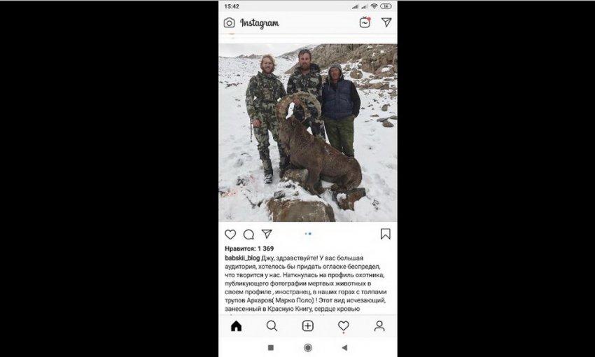 Узаконенное варварство привлекает в Кыргызстан убийц животных со всего мира