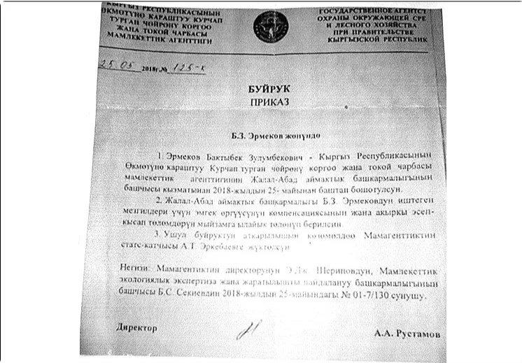 Почему глава Лесхоза Киргизии сохранил свой пост?