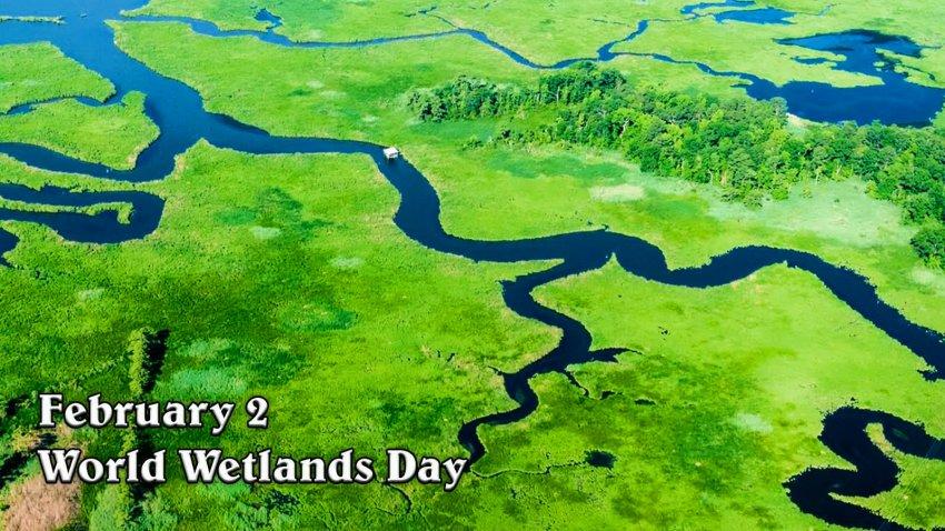 2 февраля- Всемирный день водно-болотных угодий. World Wetlands Day. Кыргызстан
