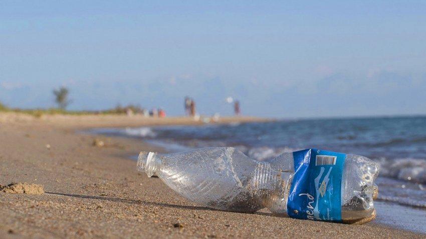 91,3% проголосовавших читателей поддержали запрет на производство и импорт пластиковых пакетов.