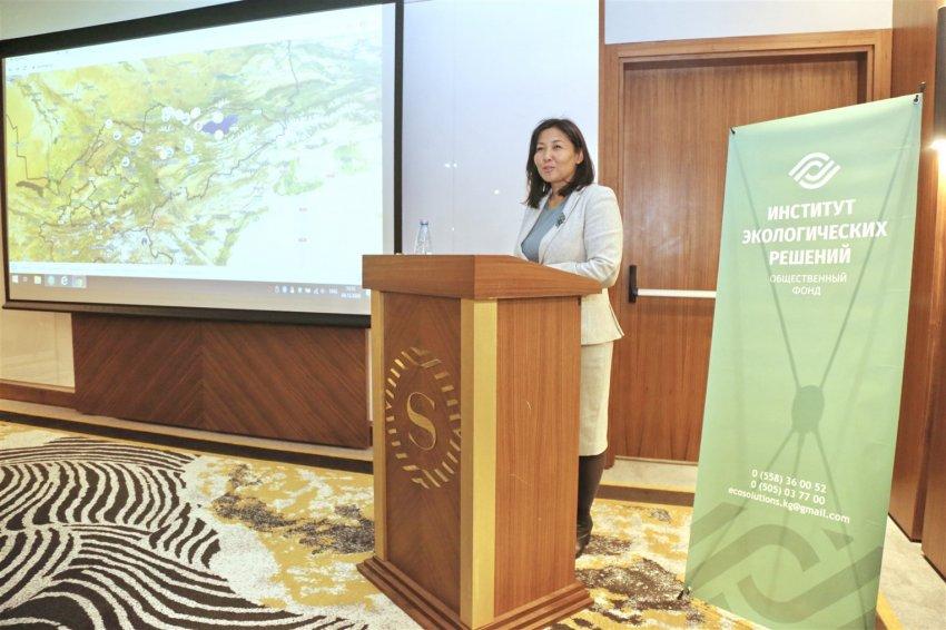 В Кыргызстане появилась карта, фиксирующая экологические нарушения- Ecomap.kg