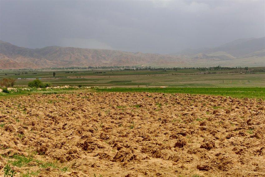 8-й Всемирный конгресс по почвозащитному и ресурсосберегающему земледелию пройдет в Швейцарии
